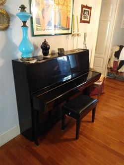 PIANOFORTE DA STUDIO PETROV su Quotazioni.it strumenti musicali,